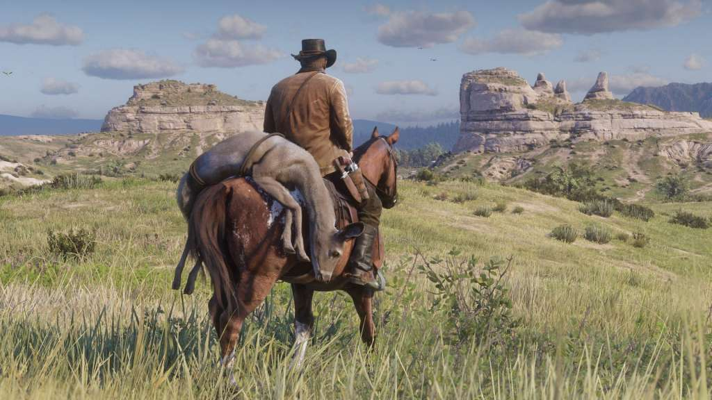 Red Dead Redemption 2 on PC, MediaMarkt apologizes: just a placeholder